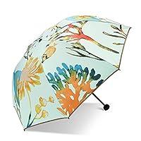 自動開閉式折りたたみ傘 太陽の傘サンプロテクションUV傘女性の二重層新鮮な折り畳み傘傘二重使用 (色 : C)