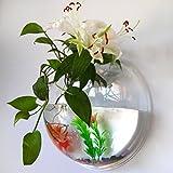 Demiawaking 金魚鉢 ドラム型 ガラス水槽 アクアリウム おしゃれ 金魚 鑑賞魚 ヤドカリ 小動物など飼育 (透明タイプ)