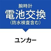 電池交換サービス(防水検査、パッキン交換、金属ベルト洗浄を含む)[ユンカース]JUNKERS