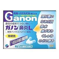 【指定第2類医薬品】ガノン鼻炎L 24カプセル×5個