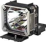 キヤノン 交換ランプ RS-LP02(SX6/X600用) 1311B001