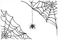 ウォールステッカー 飾り 30×30cm シール式 装飾 おしゃれ 壁紙 はがせる 剥がせる カッティングシート wall sticker 雑貨 ガラス 窓 DIY プチリフォーム パーティー イベント 賃貸 クモ 蜘蛛の巣 白 黒 010224