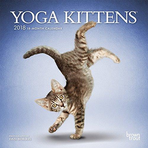 Yoga Kittens 2018 Calendar