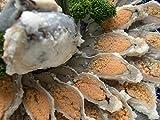 【魚友商店】子持ち鮒寿司 琵琶湖産天然にごろぶな LLサイズ(160g?170g)スライス