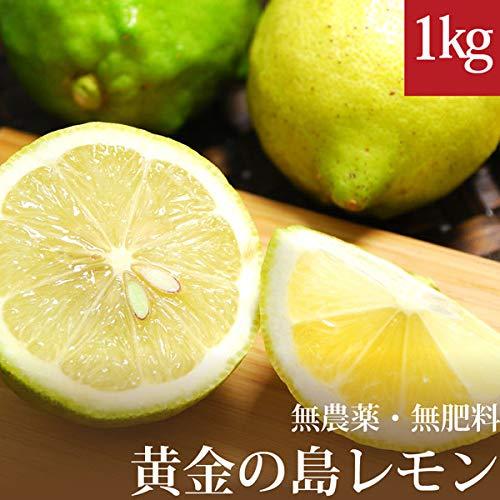 無農薬 訳あり黄金の島レモン 1kg 広島産 国産