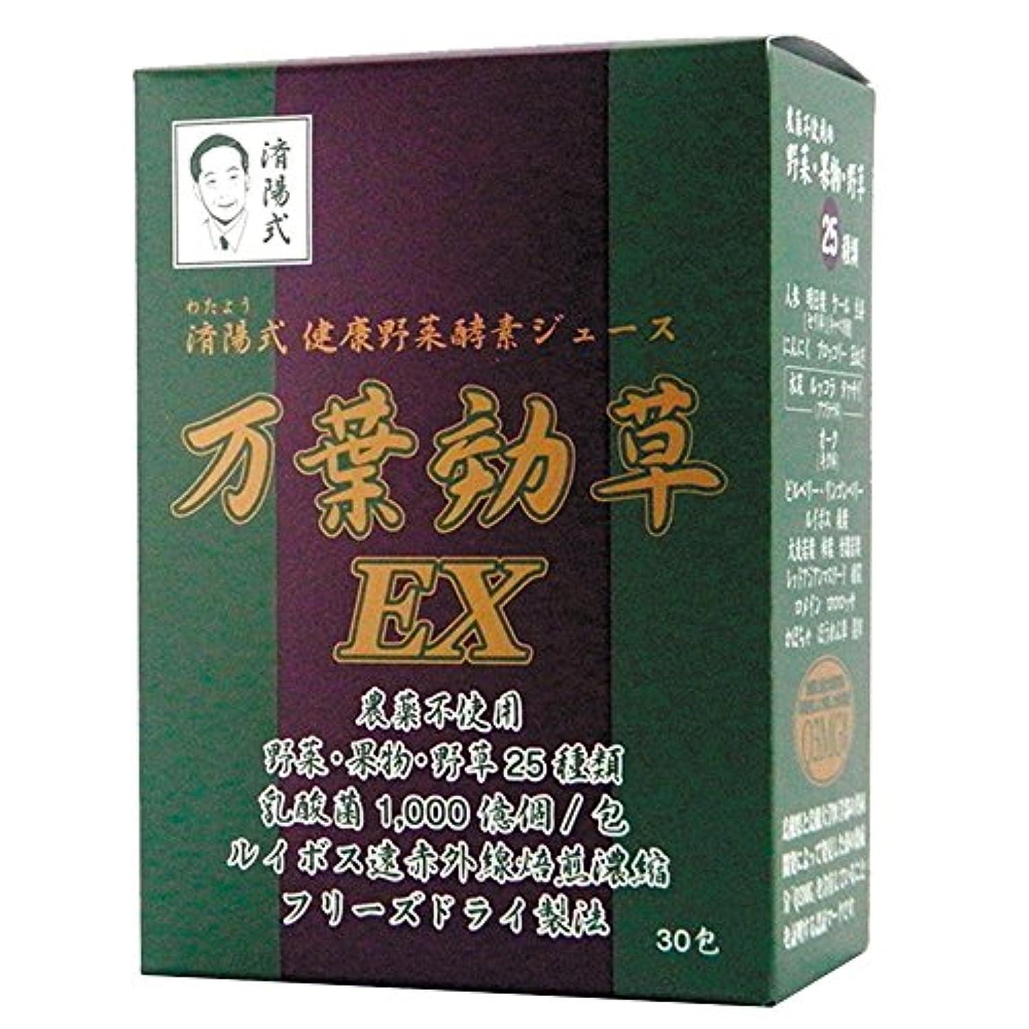 奨励受粉するコスチュームAIGエム 済陽式 健康野菜酵素ジュース 万葉効草EX