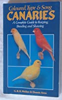 Coloured, Type and Song Canaries: A Complete Guide