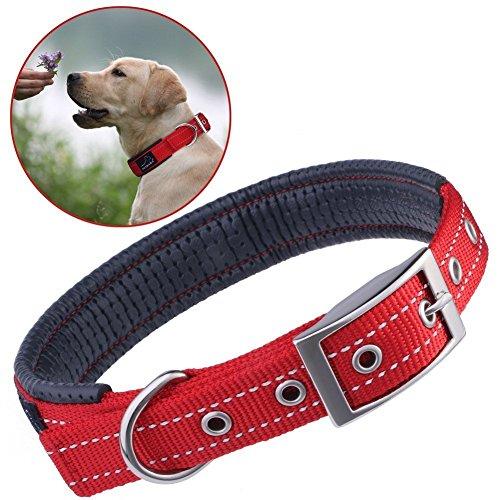 犬用首輪 PETBABA(ペットババ) 犬首輪 反射素材 大型犬 中型犬 ドッグカラー 調整可能 お散歩トレーニングに便利 ソフトコットン裏地 金属バックル (レッド)