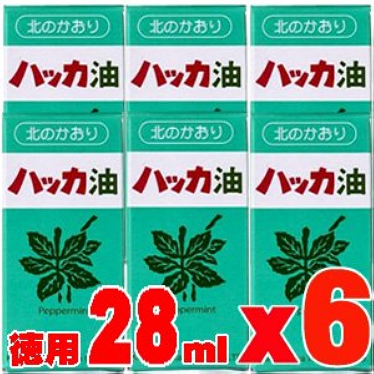 傀儡アクティビティ漁師【徳用28ml6本】 北見ハッカ通商 ハッカ油 ボトル 28mlx6本