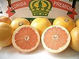 南国フルーツ ワンランク上のグレープフルーツ ゴールデンクラウン アメリカ・フロリダ産グレープフルーツ  ルビー 中 24玉