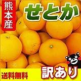 熊本県産 訳あり せとか 5kg 【 九州 熊本 セトカ みかん ミカン オレンジ 柑橘 】