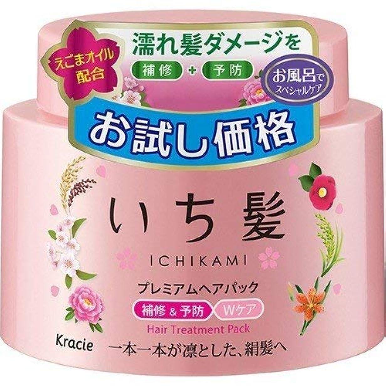 始める文異議いち髪 プレミアムヘアパック おタメしカカク(180g)