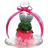 【Amazon.co.jp 限定】 TEATSIGHT プリザーブドフラワー ガラスポット入り フラワーアレンジ ラッピング済み ( うさぎ カーネーション )