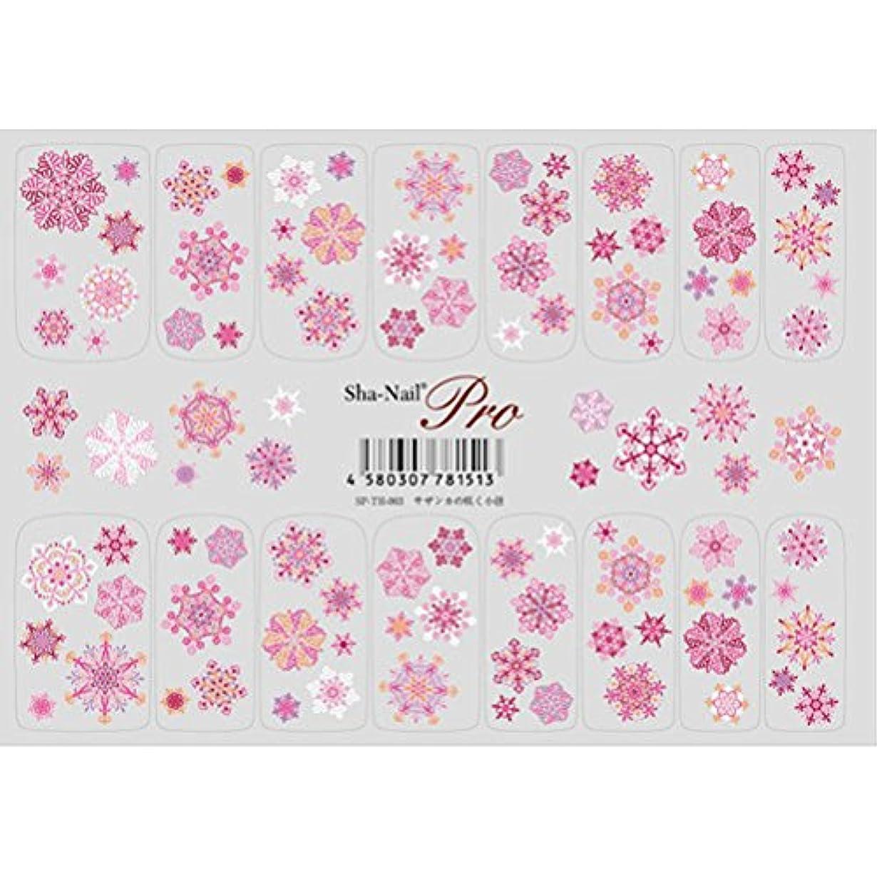 フォルダダウンタウンチチカカ湖天空の花 サザンカの咲く小径