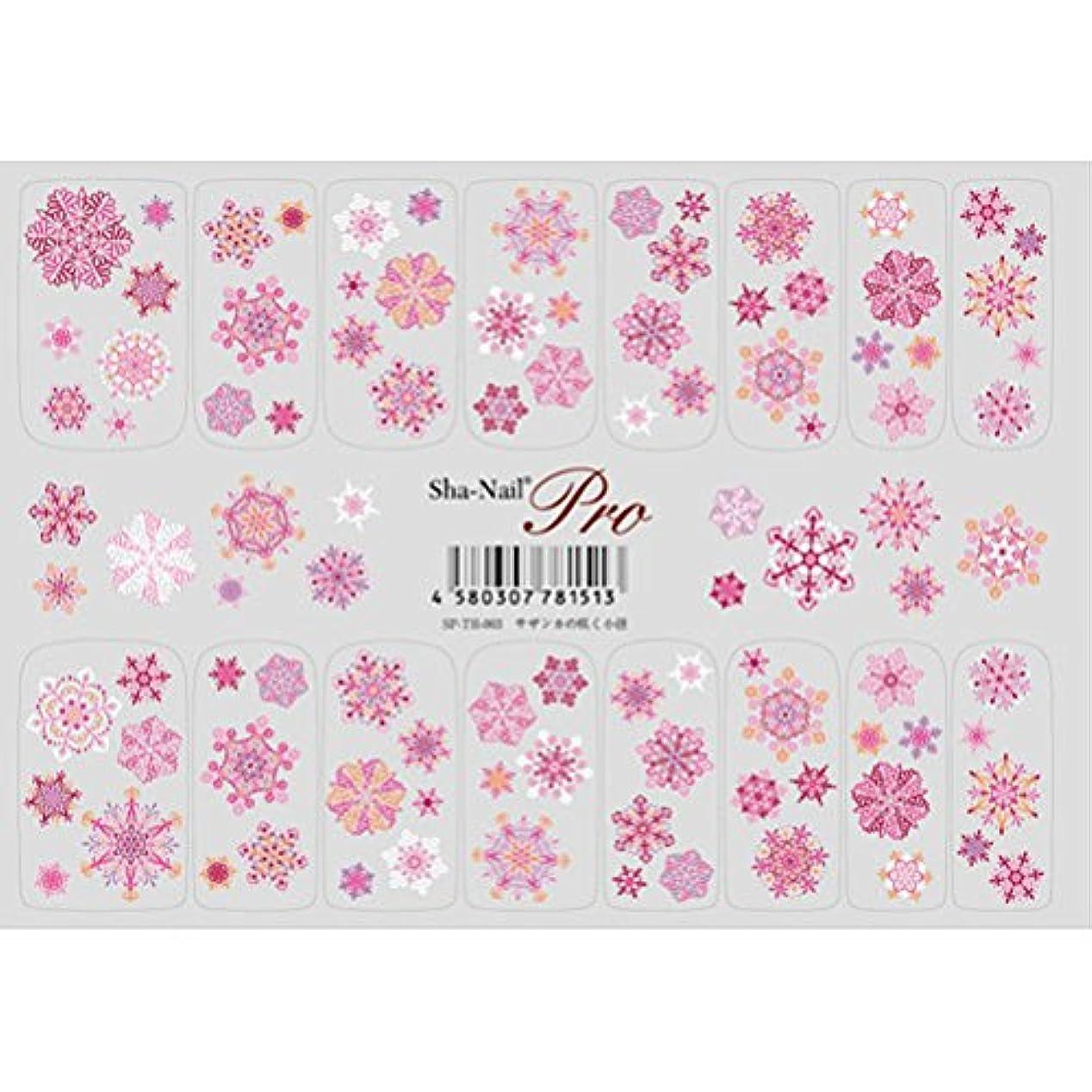 楽しませるオートマトン市民権天空の花 サザンカの咲く小径