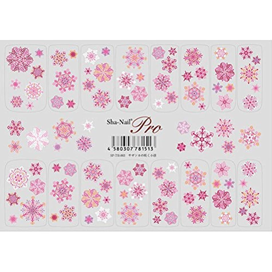 給料市場空洞天空の花 サザンカの咲く小径