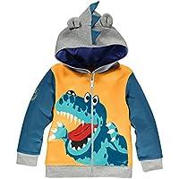 Little Boys Dinosaur Hooded Jacket Cartoon Zipper Kids Sweatshirts Sport Hoodies for Toddler 1-6 Years
