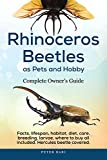 Rhinoceros Beetles as Pets and Hobby: Complete Owner's Guide: Facts, lifespan, habitat, diet, care, breeding, larvae, where to buy, Hercules beetle all covered. (English Edition)