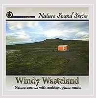 Windy Wasteland