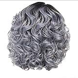 かつら女性の短い巻き毛シルバーグレーレトロ巻き毛ネット30 cm