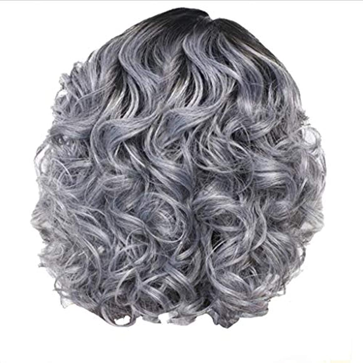 藤色刺激する残り物かつら女性の短い巻き毛シルバーグレーレトロ巻き毛ネット30 cm