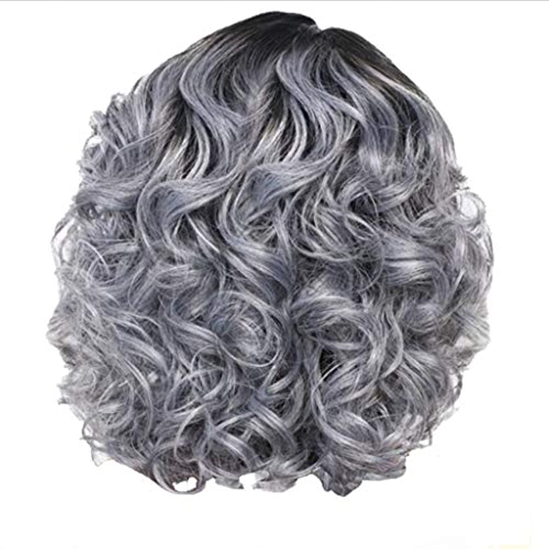 アウトドアシダ誇張するかつら女性の短い巻き毛シルバーグレーレトロ巻き毛ネット30 cm