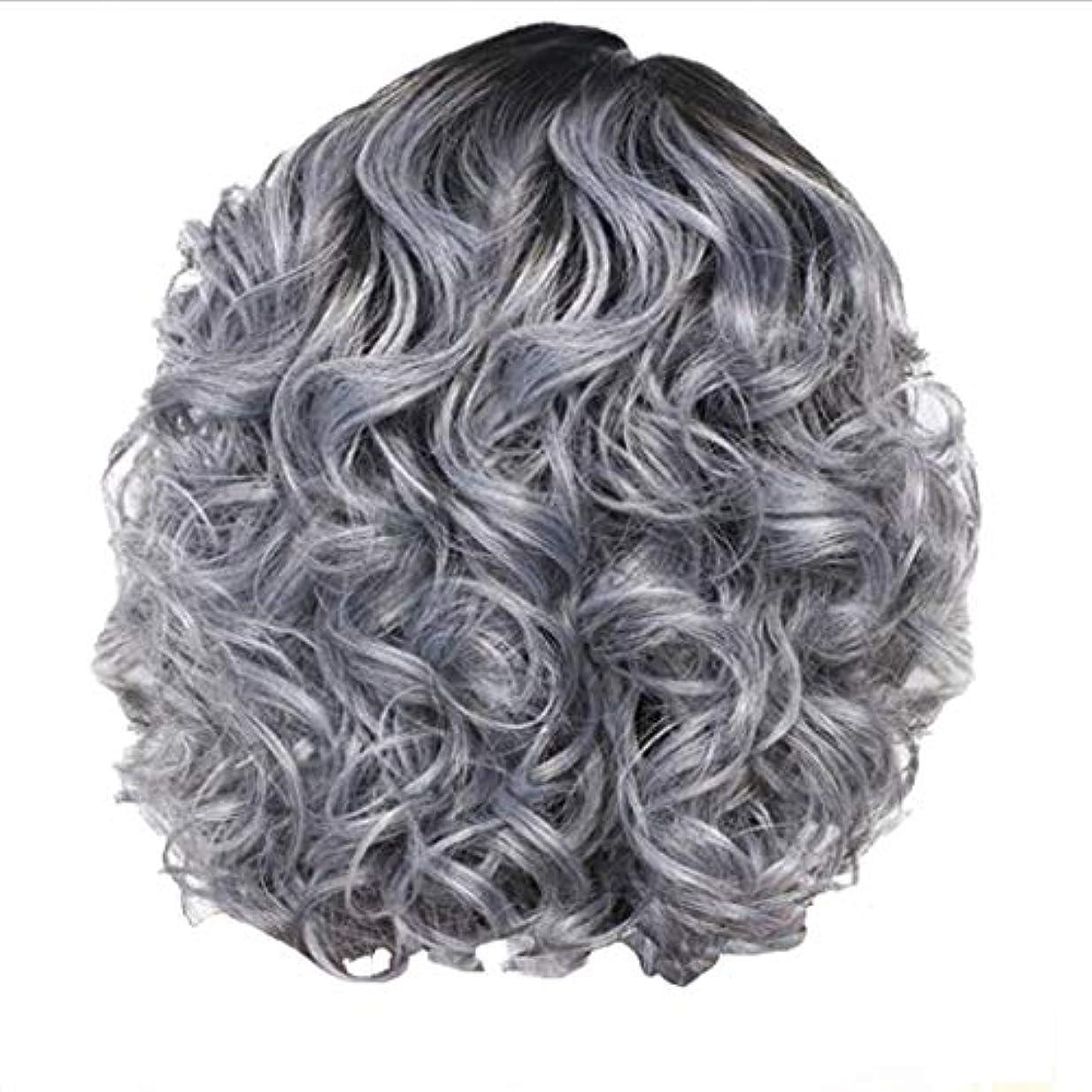 火山拷問反抗かつら女性の短い巻き毛シルバーグレーレトロ巻き毛ネット30 cm