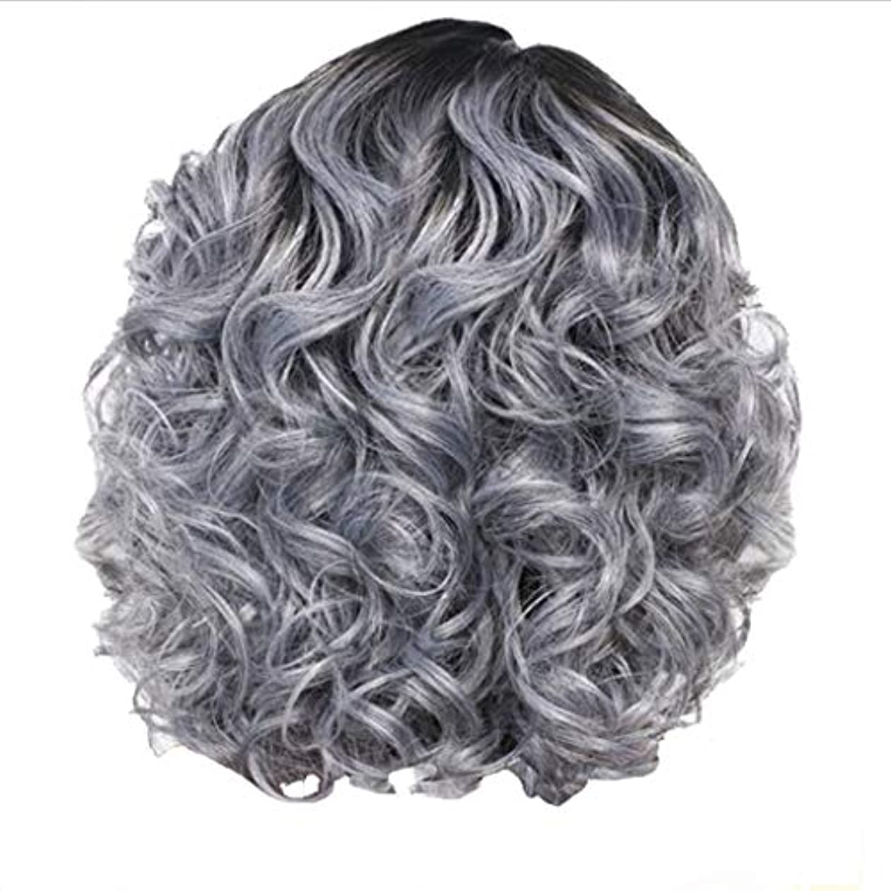 ショップインディカ関係ないかつら女性の短い巻き毛シルバーグレーレトロ巻き毛ネット30 cm