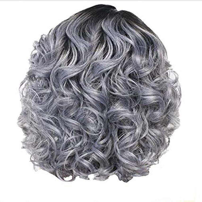 旋回夕暮れダースかつら女性の短い巻き毛シルバーグレーレトロ巻き毛ネット30 cm