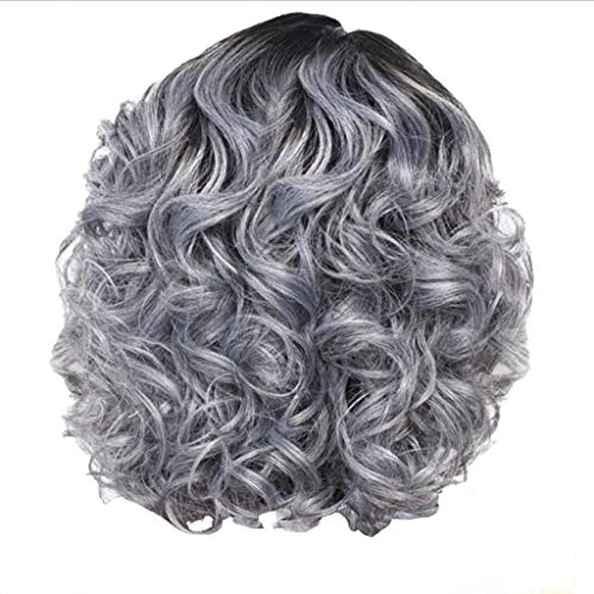 大統領ジャニス書士かつら女性の短い巻き毛シルバーグレーレトロ巻き毛ネット30 cm