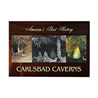 "CafePress–Carlsbad Caverns Americasbesthist–長方形マグネット、2"" x3""冷蔵庫マグネット"