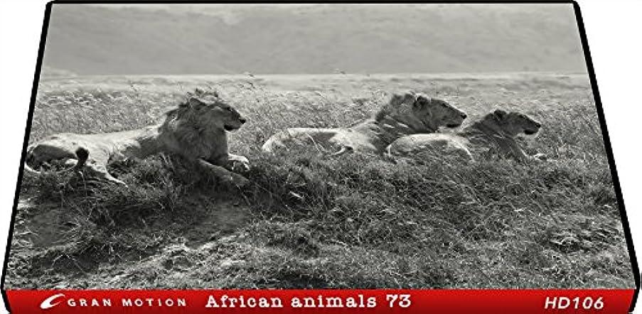 ヘルパー終了する正義HD106_動画素材集HDグランモーション アフリカンアニマルズ73(ロイヤリティフリーDVD素材集)