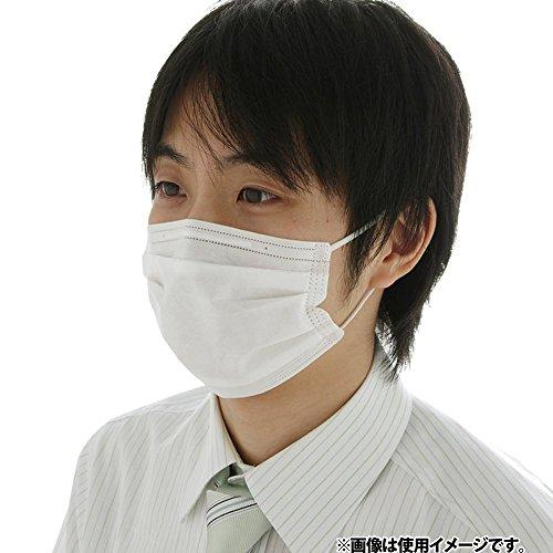 アイリスオーヤマ マスク プリーツ 大きめ 60枚入り NRN-60PL