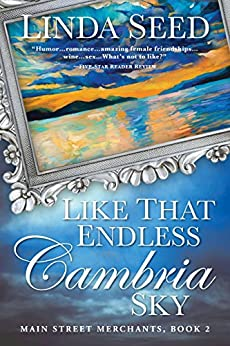 Like That Endless Cambria Sky (Main Street Merchants Book 2) by [Seed, Linda]