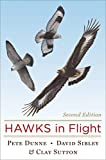 Hawks in Flight: Second Edition 画像