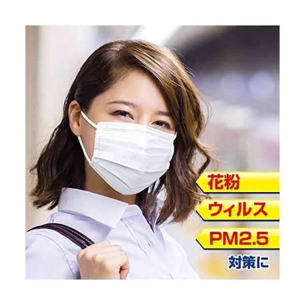 (PM2.5対応)快適ガードさわやかマスク レ...の紹介画像7