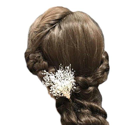[해외]irudepain (이루데빠인) 머리 장식 카스미 잔디 프리 자 브드 후라 1 개 U 핀 원단 흰색/irudepain (Ideepain) hair ornament haze grass preserved flower 1 U pin tailored white