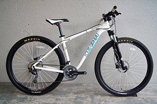 R)LOUIS GARNEAU(ルイガノ) XC BART PRO 29(XC バート プロ 29) マウンテンバイク 2012年 450サイズ