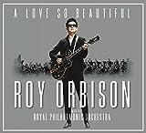 A Love So Beautiful: Roy Orbis 画像