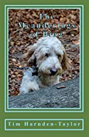 The Meanderings of Bing: A Gentle, Humorous Look at Life, Snooker, Whizzers and Other Great Philosophical Mysteries Through the Meanderings of Bing, a Dog of Rather Large Brain, and His Minder Tim, as They Potter Through Their Days Together. (Lines from My Forehead)