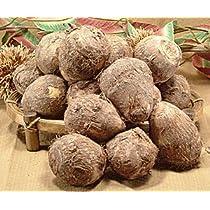 上庄の里芋10kg