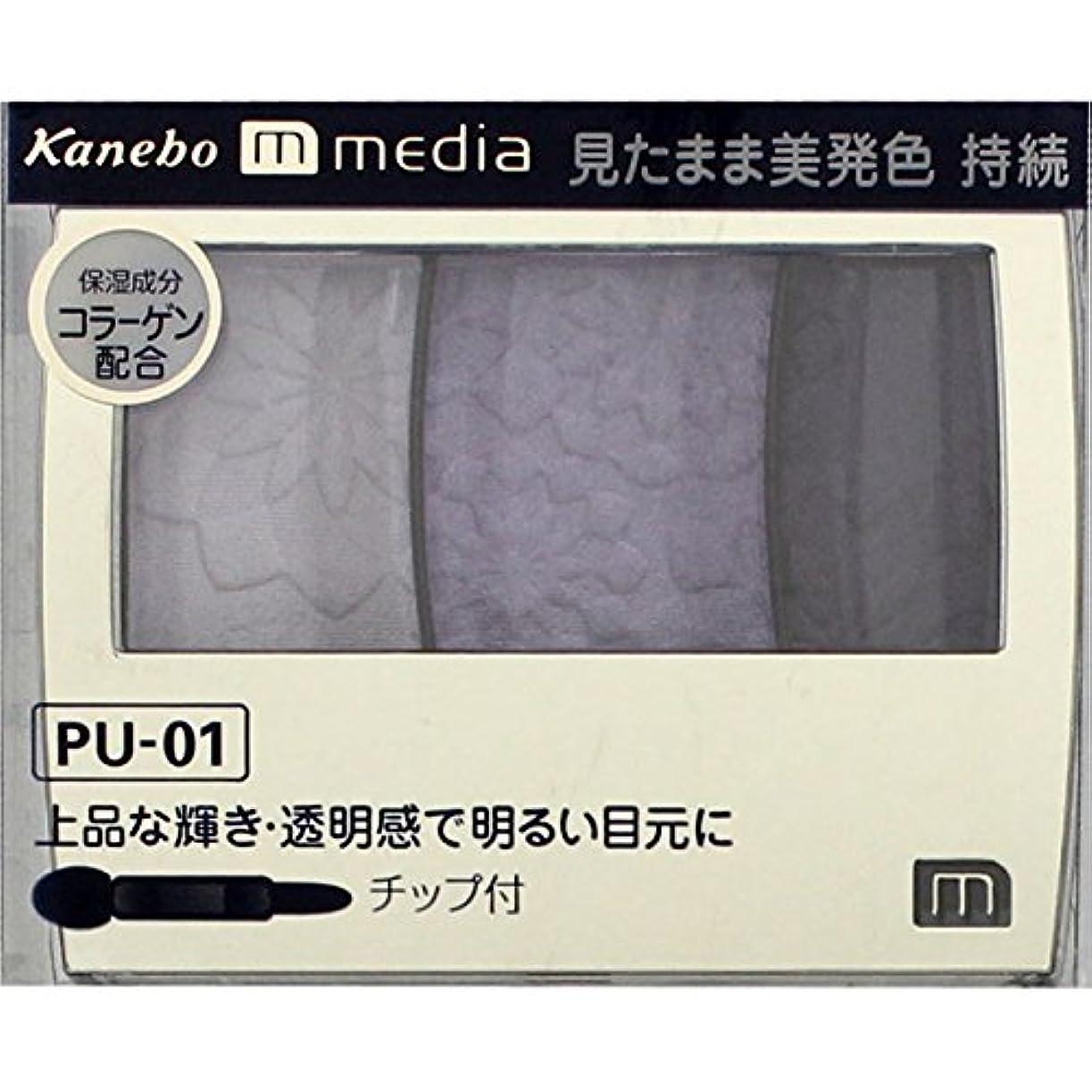 親密な石膏リンクカネボウ メディア(media)グラデカラーアイシャドウ カラー:PU-01