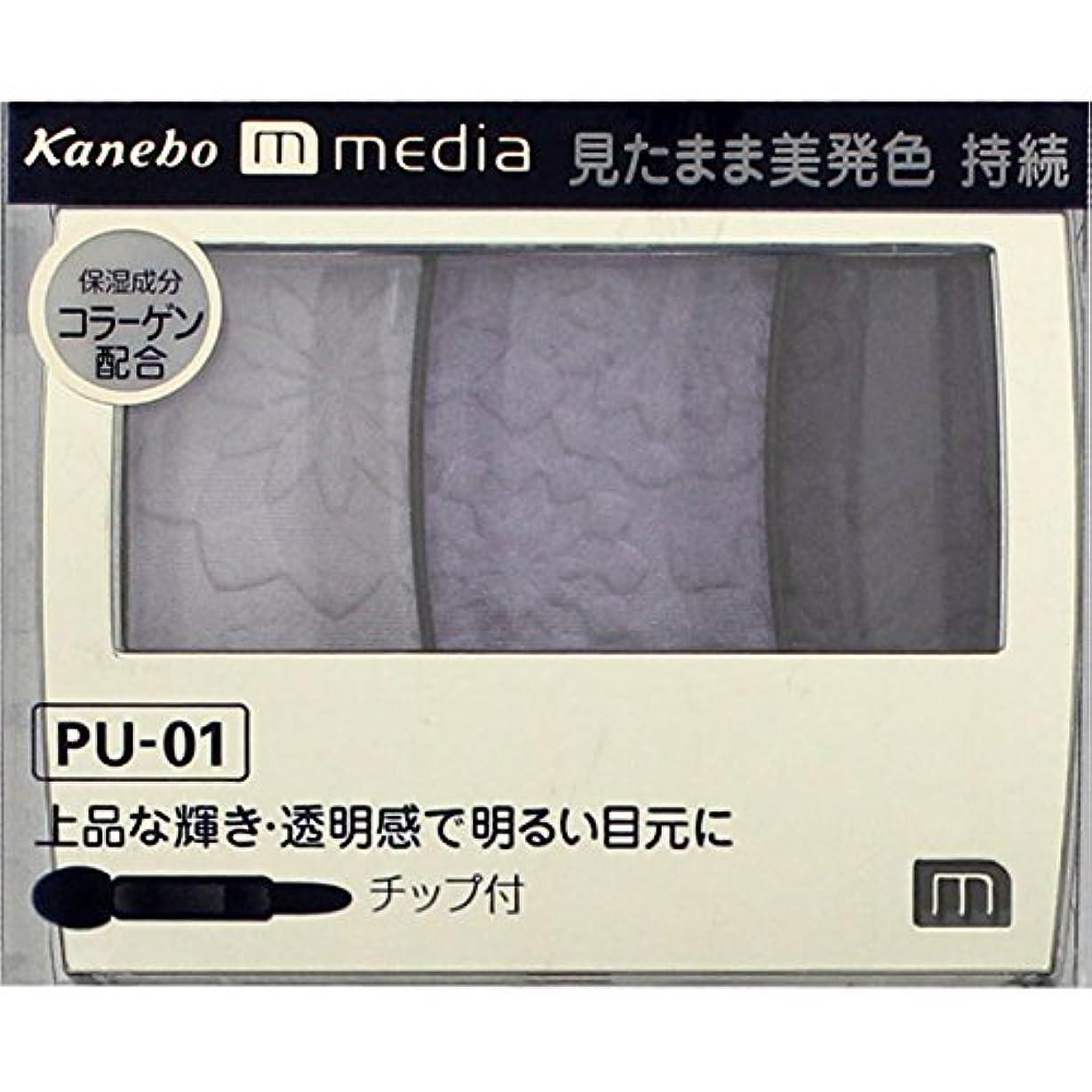 弱まる人物過剰カネボウ メディア(media)グラデカラーアイシャドウ カラー:PU-01