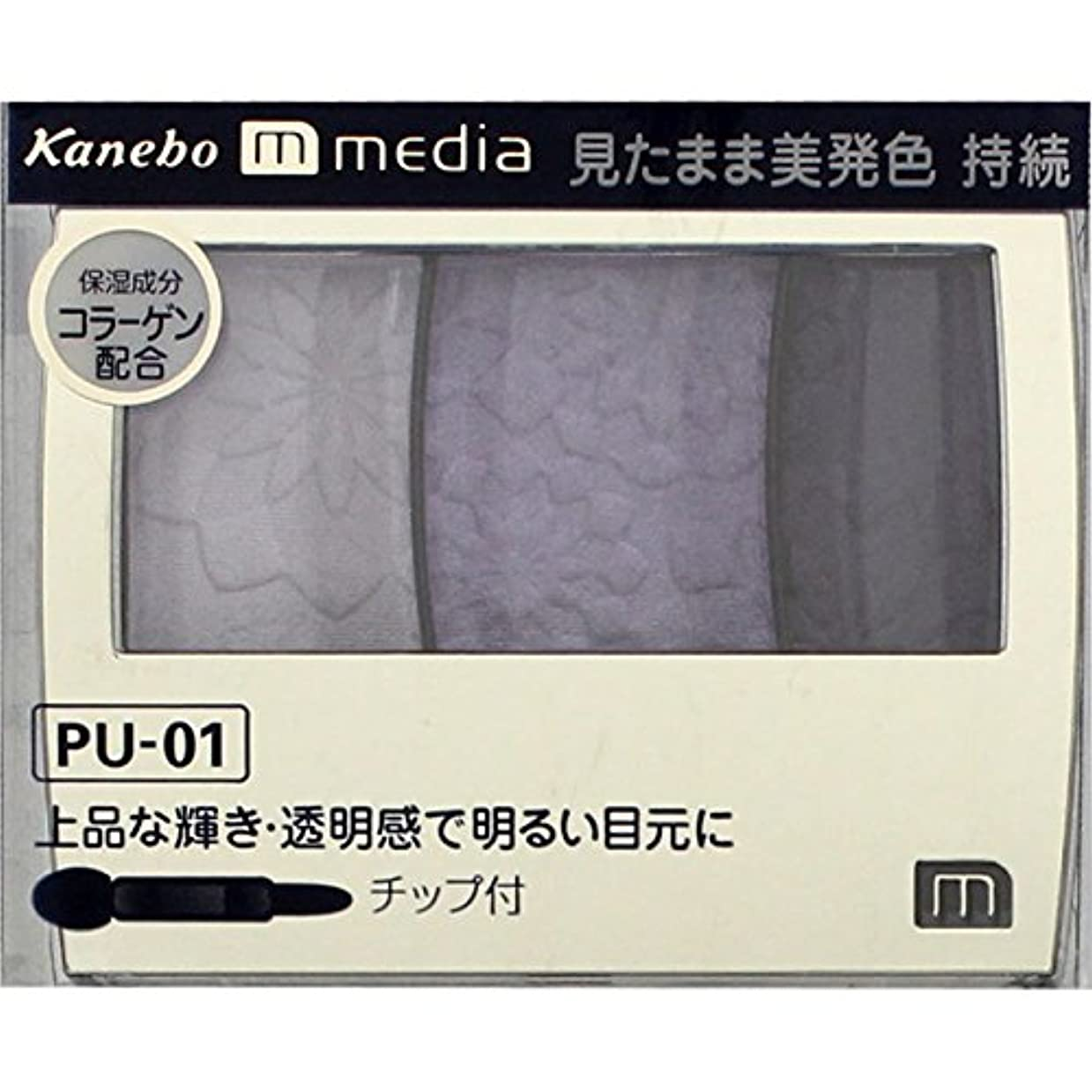 有利バレエ解決カネボウ メディア(media)グラデカラーアイシャドウ カラー:PU-01