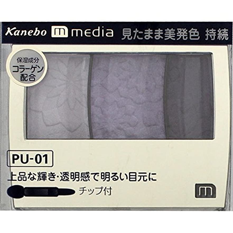 孤独ほんの気を散らすカネボウ メディア(media)グラデカラーアイシャドウ カラー:PU-01