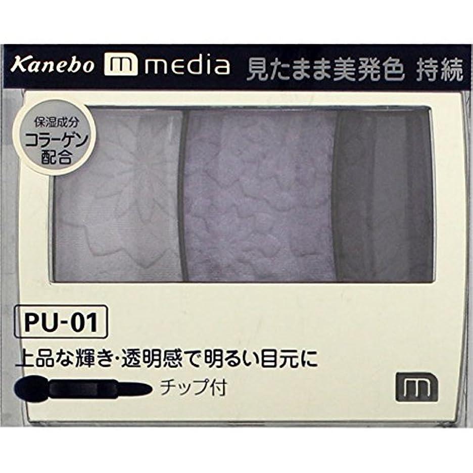 バブルのホスト信頼できるカネボウ メディア(media)グラデカラーアイシャドウ カラー:PU-01