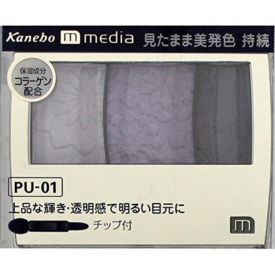 賛辞リアル追い越すカネボウ メディア(media)グラデカラーアイシャドウ カラー:PU-01