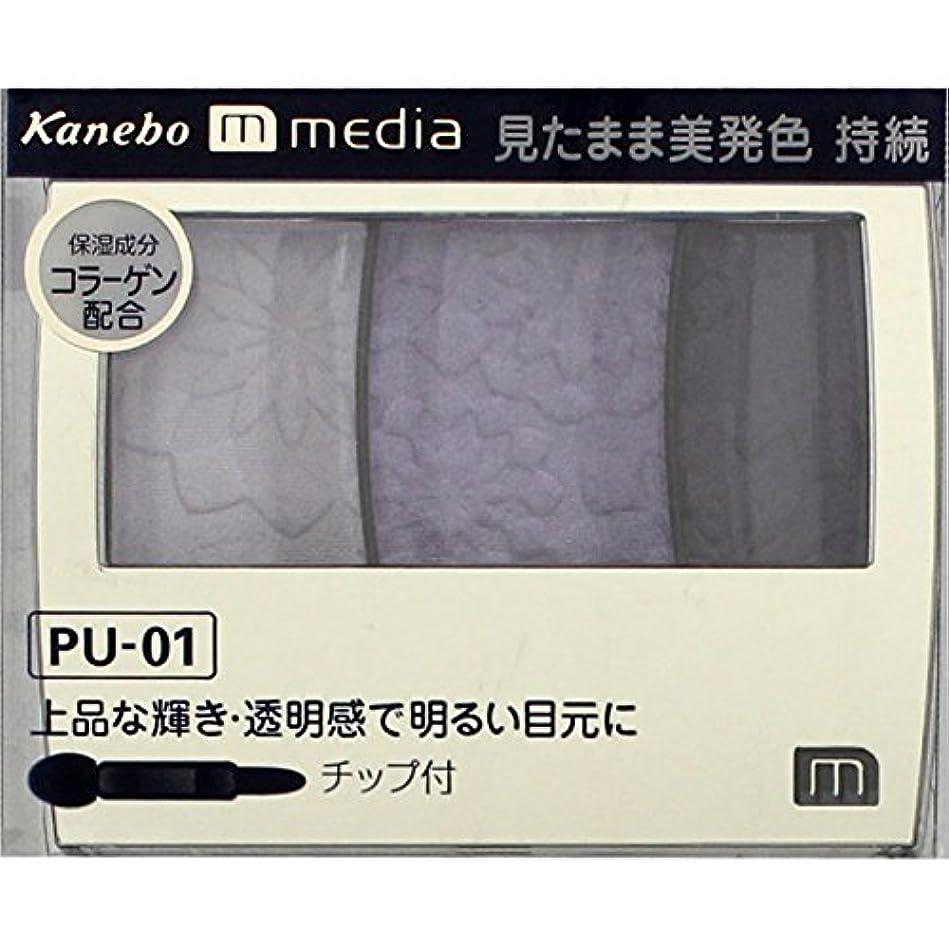 利点ロール石のカネボウ メディア(media)グラデカラーアイシャドウ カラー:PU-01