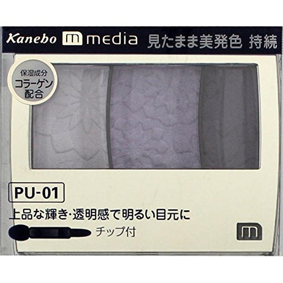 台風ハンドブック耕すカネボウ メディア(media)グラデカラーアイシャドウ カラー:PU-01