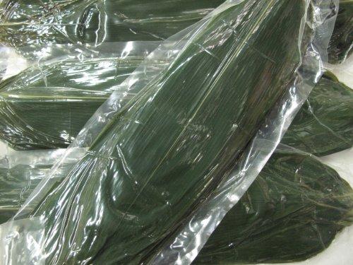 真空 枝なし 笹の葉 100枚 中国産